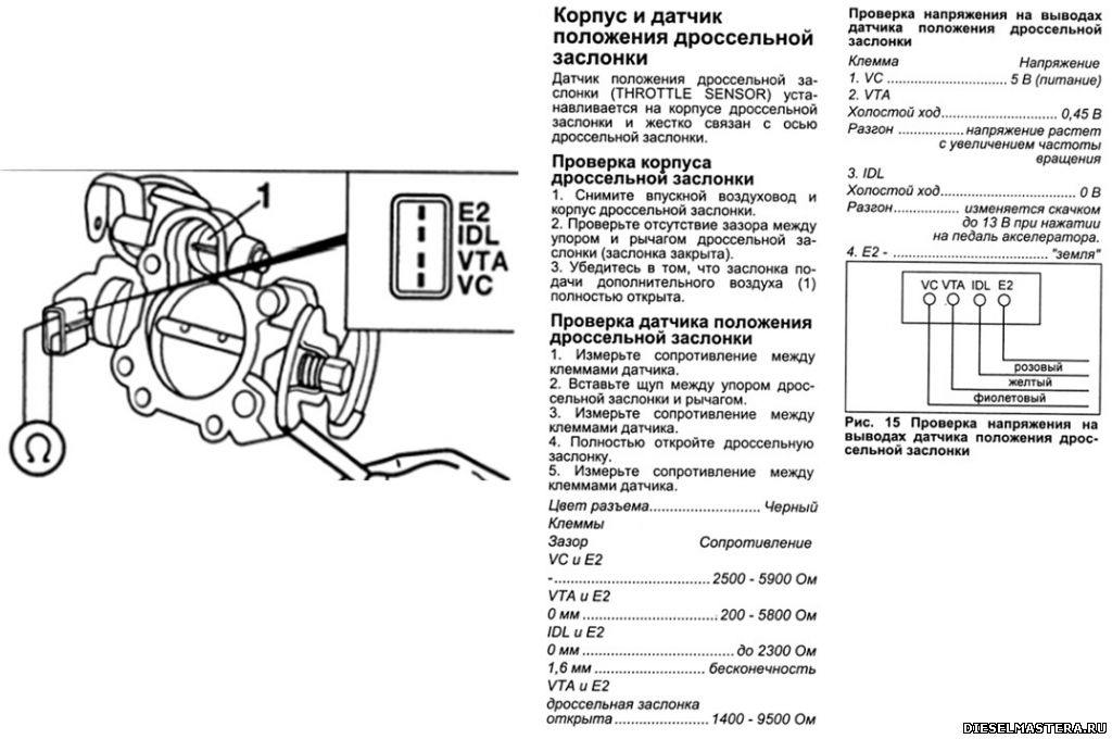 AntonC968EO